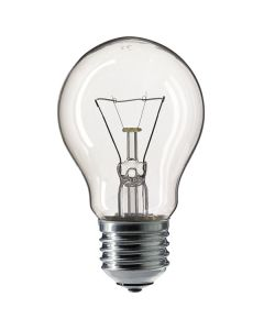 100W 110V SCREW-IN LIGHT BULB ES